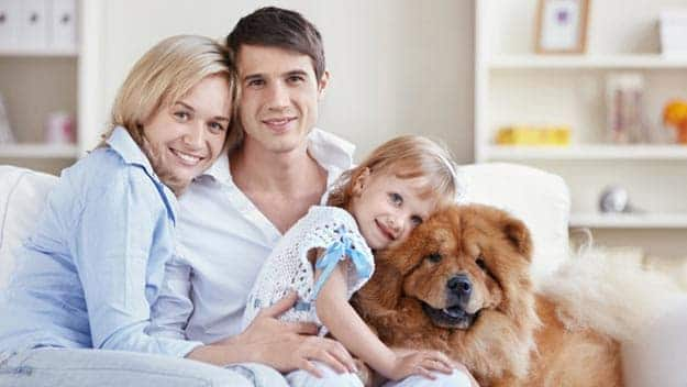 Wills & Trusts dog-young-family Direct Wills Motspur Park
